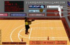 Zaisti: Basketball