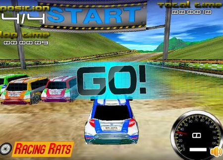 Zaisti: Rally Expedition 3D